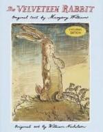 Velveteen Rabbit Children's Book