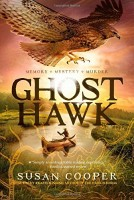 Historical Fiction Children's Book: Ghost Hawk