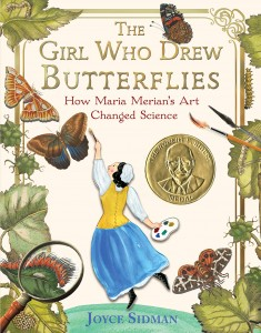 Children's book - Girl who drew butterfles